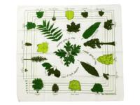 THE PRINTED IMAGE 【ザ プリンティッド イメージ】NATURE FACTS BANDANAS *Trees of North America