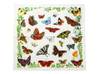 THE PRINTED IMAGE 【ザ プリンティッド イメージ】NATURE FACTS BANDANAS *BUTTERFLY